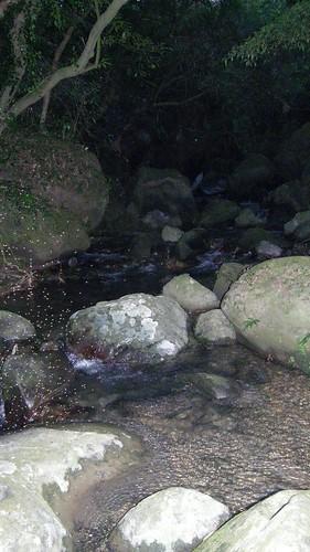 102.沿著石梯坑溪向下游前進