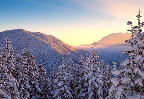 Sunrise In Olympic National Park - (c) Kevin Mc Neal