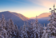 Sunrise In Olympic National Park (kevin mcneal) Tags: winter sunset snow nature sunrise canon landscape nationalpark seasons hiking olympicpeninsula fresh snowshoeing washingtonstate hurricaneridge highway101 canon5dmk2 oiympicnationalpark