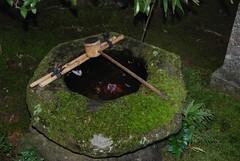 8-Nanzenji Basin