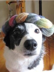 Prism as hat