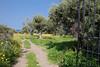 20090502diapo sicile-37 (franchab) Tags: wwwfranchabphotographefr