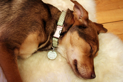 Sleepy Murray