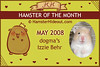 Hamster-of-the-Month-Award-Cert-May2008