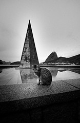 O Gato e o Monumento [The Cat and The Monument] (Jim Skea) Tags: brazil blackandwhite monument brasil riodejaneiro pyramid gato sugarloaf podeacar aterrodoflamengo pretoebranco flamengo baadeguanabara flamengopark guanabarabay pirmide jimsk monumentaestciodes