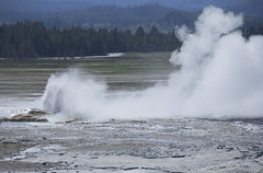 Minor eruption (radiann) Tags: geyser westyellowstone