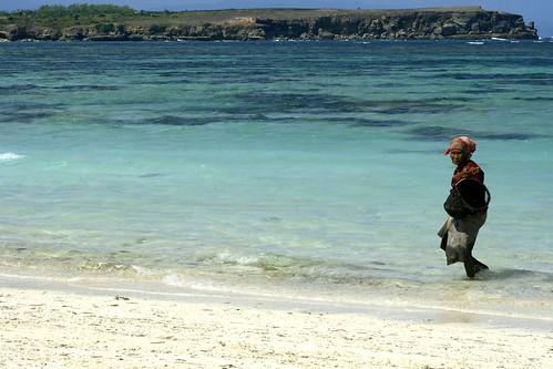 Sumerang seaweed gatherer