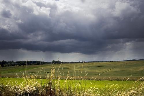Black Summer Rain