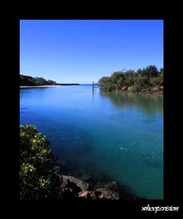 Brunswick Heads (whoops vision) Tags: ocean trees fish beach nature water river bush shoreline clearsky northernnewsouthwales northernrivers brunswickheads brunswickriver aplusphoto