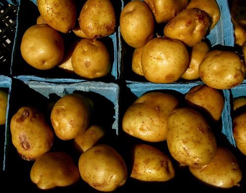 Aardappelen Batatas Kartoffeln Papas Patate Pommes de terre Potatoes Poteter