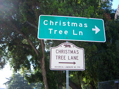 Christmas Tree Lane CHL #990 by tkksummers on Flickr!