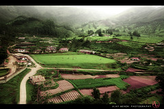 monsoon fields (ajay m) Tags: road india mist green field peace kerala 1750 bliss munnar villege tamaron canon40d