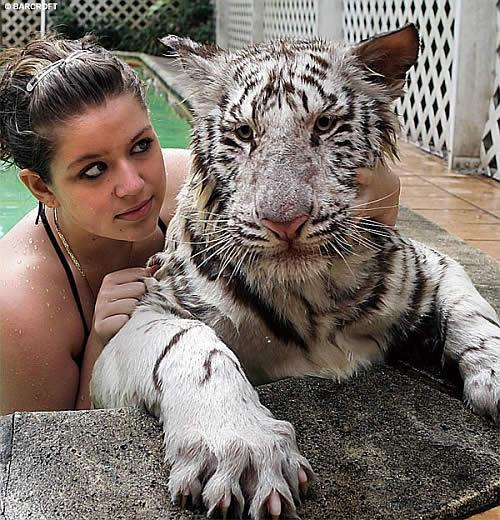 2799677562 f79ce024ff o Teaching Wild Animals to Swim