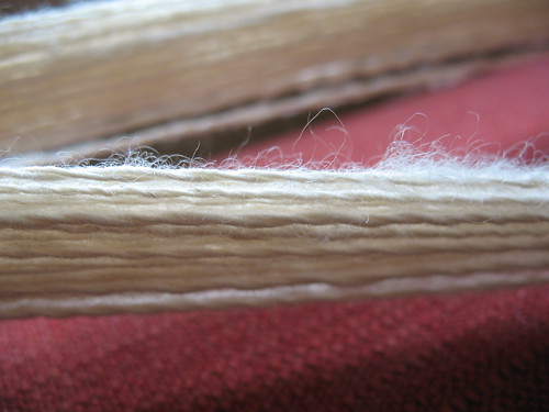 Two-ply BFL undyed