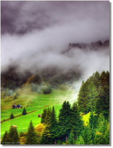~ ascending fog in the valley ~