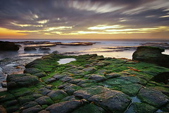 Seaweed Rest (Tim Donnelly (TimboDon)) Tags: ocean sea sunrise australia nsw cokin bungan goldstaraward thegreatshooter