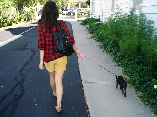 walking the dog!