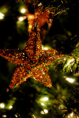 ~Star Light, Star Bright~ (by KWelborn)