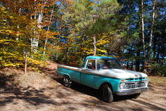 Old 66 Ford - Tioga County, PA (creekbedphotography) Tags: blue trees ford leaves pennsylvania pennsylvaniagrandcanyon tiogacounty 66ford 66fordtruck