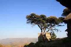 Meket escarpment trek 150 (MikeManning) Tags: travel ethiopia 2008 rtw wollo tesfa meket