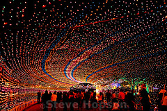 Trail of Lights, Austin (Steve Hopson) Tags: trailoflights zilkerpark austin texas austintexas nikon d700 nikond700 christmas christmas2008 christmaslights usa us starrystarrynight nightshots nightphotography cityofaustin vanishingpoint vanishingpoints amillionlittlepieces athousandpointsoflight bellescouleurs couleurs colors colours shotbook geotagged colortunnel lighttunnel tunneloflights wormhole tunnel tunnels razorbladesalvations tumblr lightpaintings lightpainting christmas2011 keepaustinweird austingone austintrailoflights austinchristmas