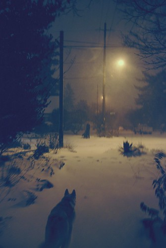 there's a blizzard in my town.