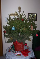 O Christmas shrub