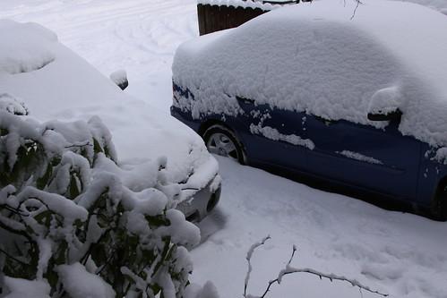 Snow, cars