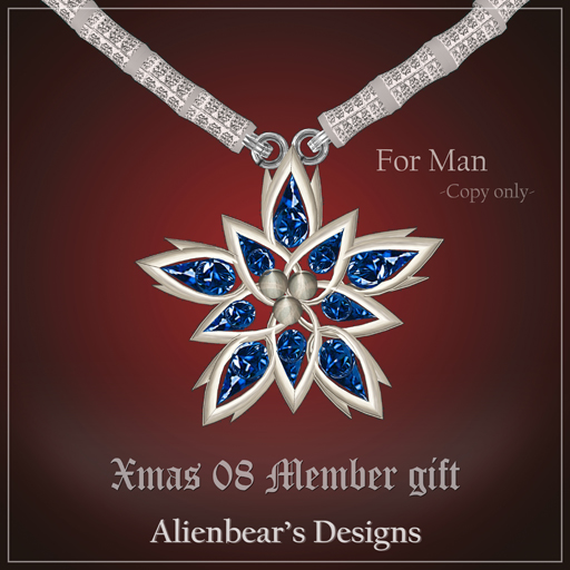 Xmas08 man member gift