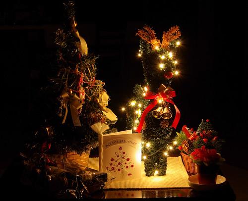 Kiskarácsony, de a miénk! :)