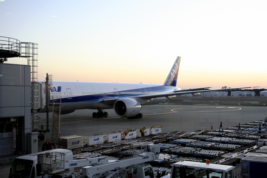 Plane Narira Aeroport