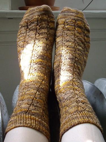 Brown Seaweed Socks