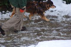 """DSC_0155 (Lynette_1_2_3) Tags: snow boots """"©portlandoregondailyphoto """"shoes"""