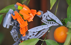 YIP 4/365 (jubewong) Tags: tangerine robot bionicle 2009yip