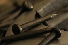 IMG_2665 (saleh al-duaij) Tags: macro nails hummer saleh alduaij