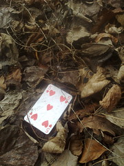lonely card (-flossie-) Tags: leaves hearts lonely playingcard