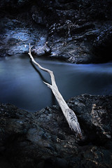 5th - the bridge (Andrew C Wallace) Tags: longexposure bridge branch australia victoria topten waterflow nd8 hollandcreek andrewwallace wrightley awphoto