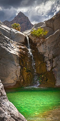 Crystal Pool under Monsoon - Baja California, Mexico (Steve Sieren Photography) Tags: mexico waterfall canyon oasis palmtree monsoon bajacalifornia greenwater crystalpool guadalupepeak