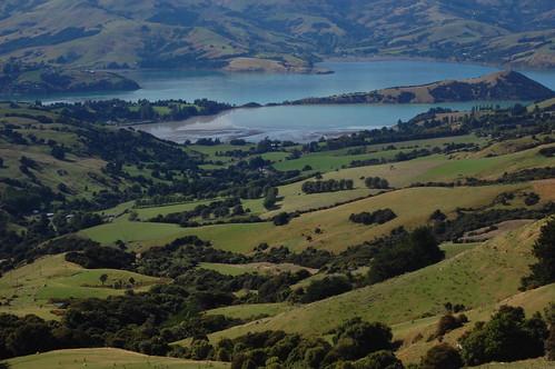 Nový Zéland - Akaroa