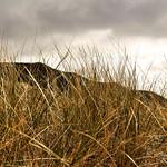 rhossilli dunes thumbnail