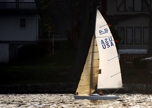 Tracy sailing her 2.4mR