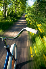 V i i r u i s a (Prr) Tags: flowers summer motion blur green bike bicycle speed forest suomi finland movement action handheld 2008 jyvskyl gravel kes voikukka 18200vr gnd8 starty cmwdgreen