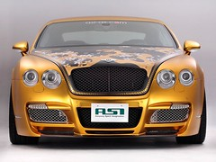 2008 ASI Bentley W66 GTS Gold 2