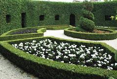Groningen, Prinsentuin, berceau (groenling) Tags: holland netherlands garden topiary box trellis hedge groningen pergola berceau boxwood formalgarden prinsentuin