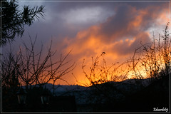 Cielo colorido (:: EdUaRdO65 ::) Tags: chile life winter sunset sky brown house mountain hot colour tree verde green nature lens relax landscape hojas arbol photography photo leaf cafe nice flickr foto shot searchthebest good walk air country sigma paisaje jun