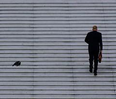 No crezcas, mi nio, no crezcas (caminanteK) Tags: voyage travel viaje paris france color luz architecture solitude pigeons paloma viajando soledad monuments iledefrance sombras escalier monsieur escaleras ladfense viajar lagrandearche seor escaliers subiendo parisladfense calvicie peldaos fujifilmfinepixs602 lesplanade caminantek