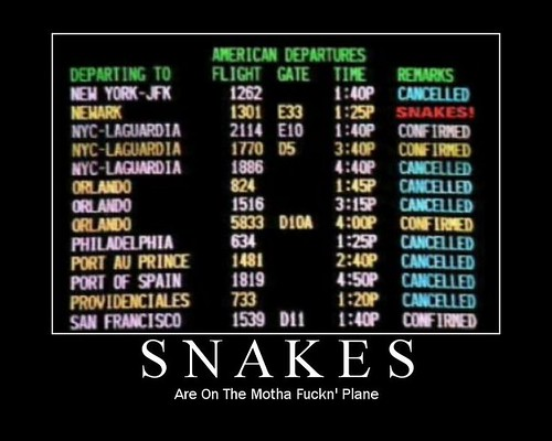 Snakes on the Plane