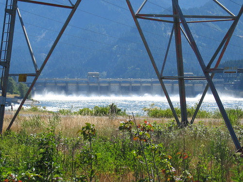 Spilling water over Bonneville Dam