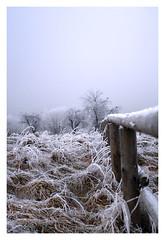 Kopie von IMG_6288-1 (powlowski) Tags: winter frost wiese sonnenaufgang raureif 10mm uww