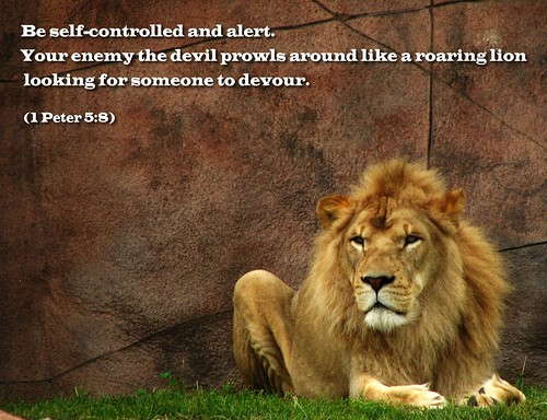 Be Self-Controlled and Alert. | Flickr - Photo Sharing!